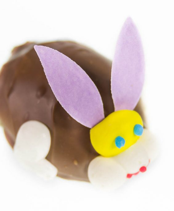 prod_e__0001_AuntCharlottes-candy-Easter-Vanilla Fudge Bunny Egg-4740
