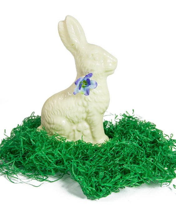 prod_e__0003_AuntCharlottes-candy-Easter-White Chocolate Hollow Sitting Bunny-4747-Edit