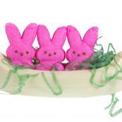 prod_e__0026_AuntCharlottes-candy-Easter-white-chocolate-canoe-4635